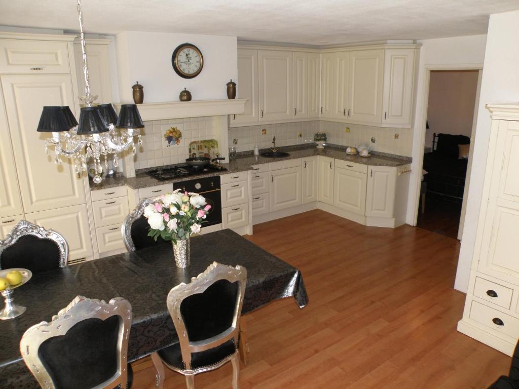Een keuken of kitchenette bij Apartment Seastar Zandvoort