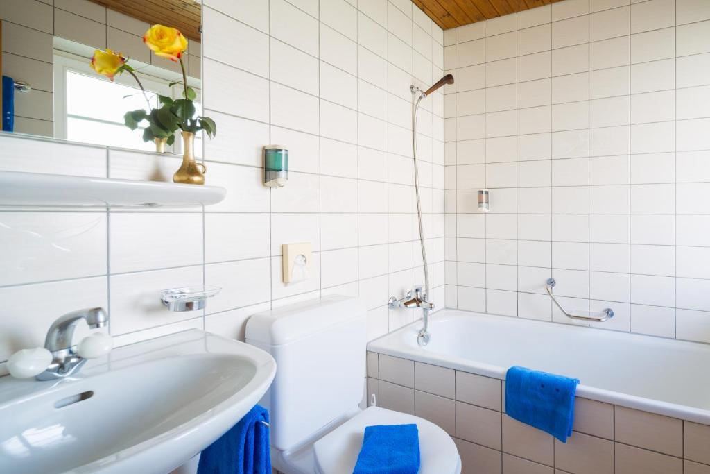 A bathroom at Hotel Alpina