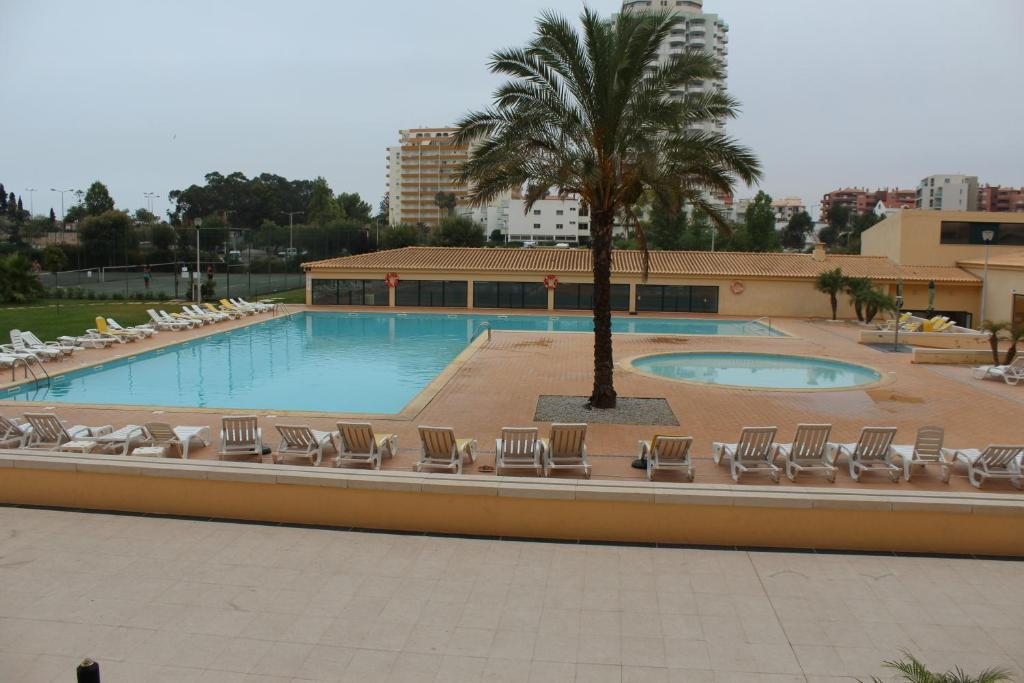 The swimming pool at or near Rocha Paradise