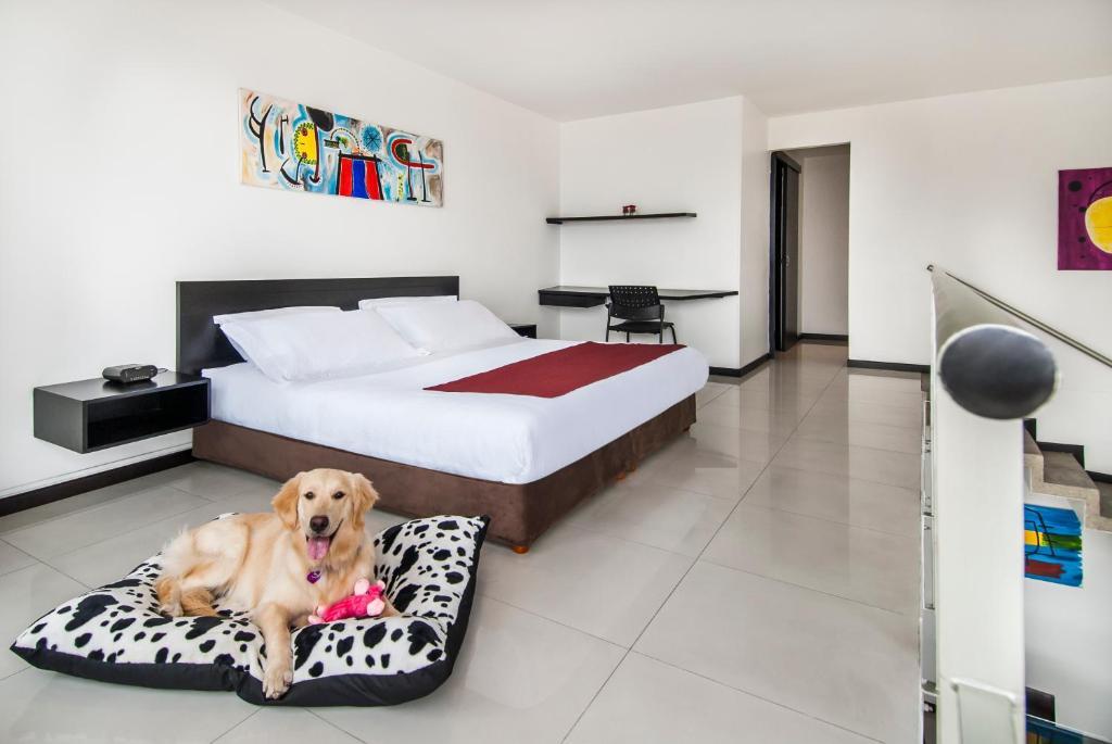 Cama o camas de una habitación en Travelers Orange Suites
