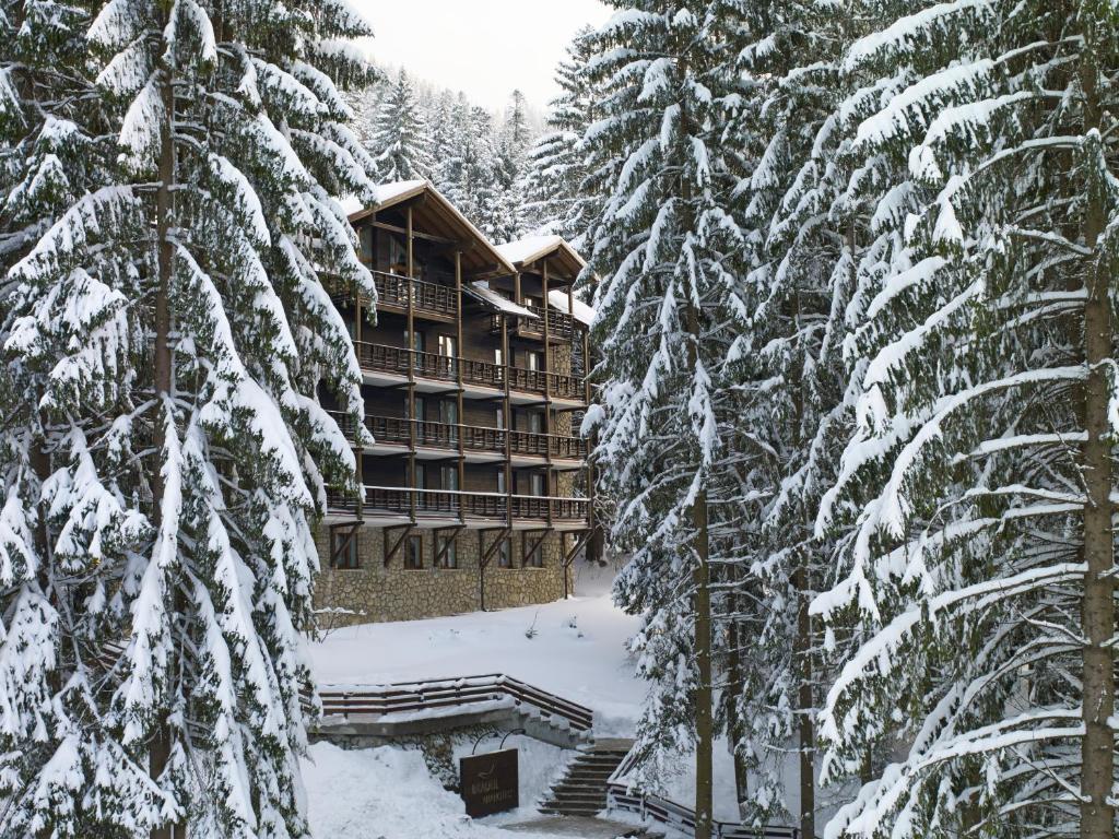 Ana Hotels Bradul Poiana Brasov during the winter
