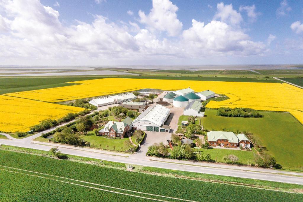 Blick auf NORDSEE Bauernhof Familie Wulff aus der Vogelperspektive