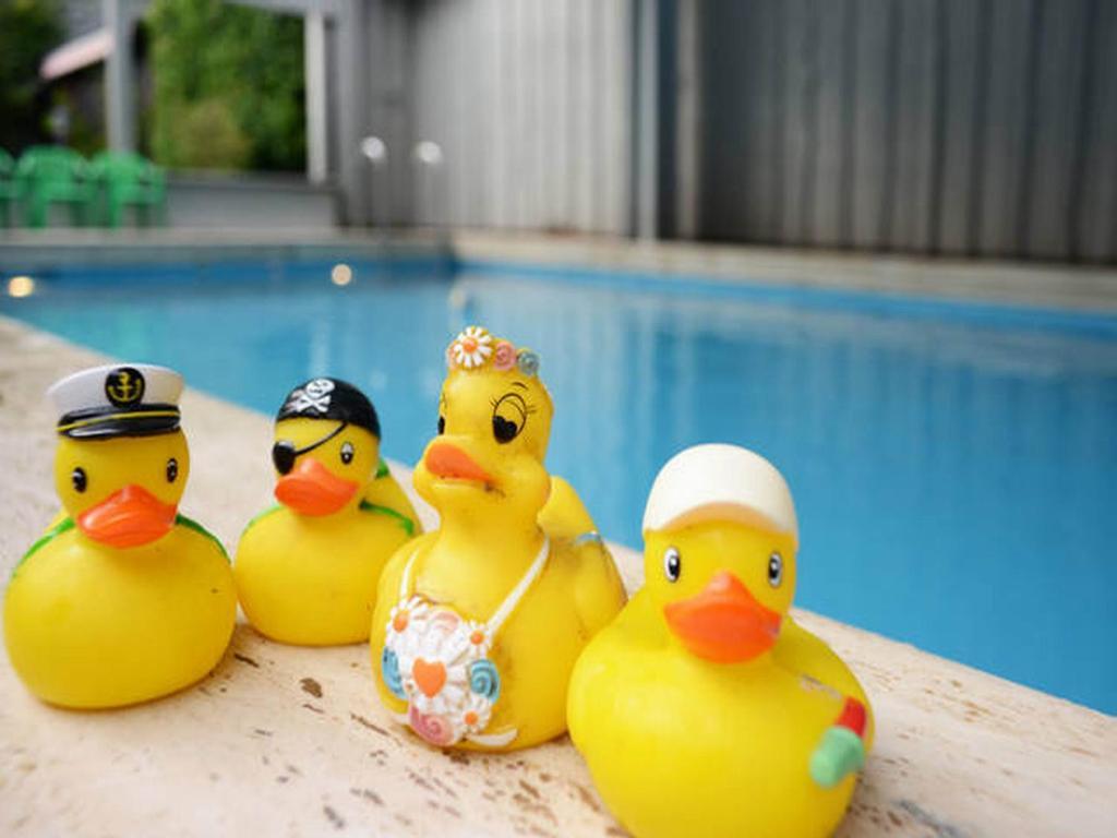 Der Swimmingpool an oder in der Nähe von Eleganza Monschau