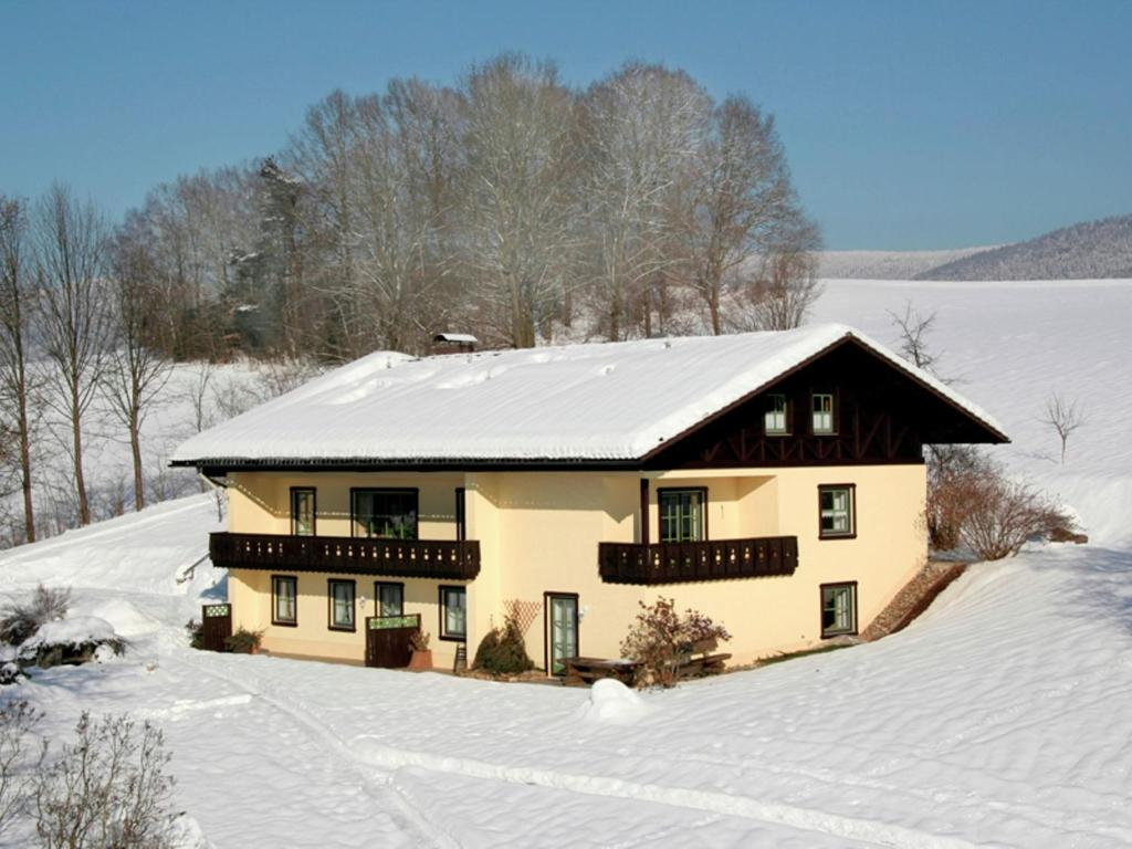 Cosy apartment in Drachselsried Bavaria with terrace im Winter