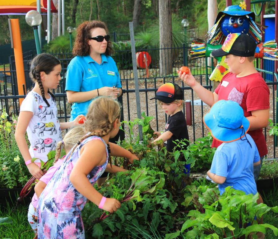 Children staying at Koala Shores Holiday Park