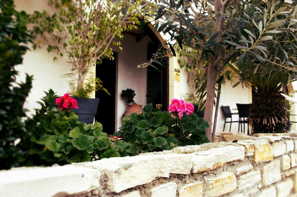Averof Nicosia, Cyprus