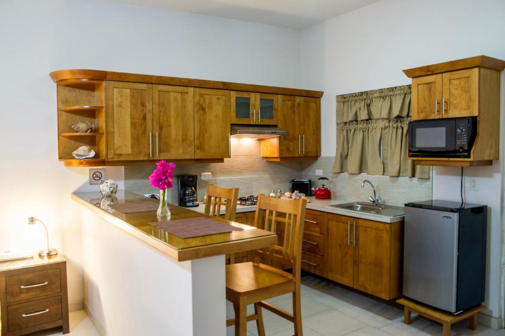 A room with a kitchen at the Bugambilias Suites.