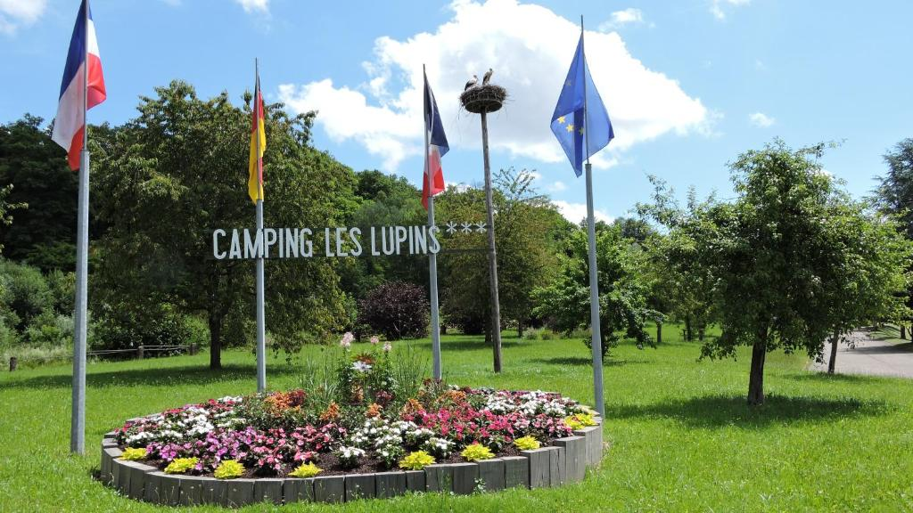 Camping Les Lupins Seppois-le-Bas, France