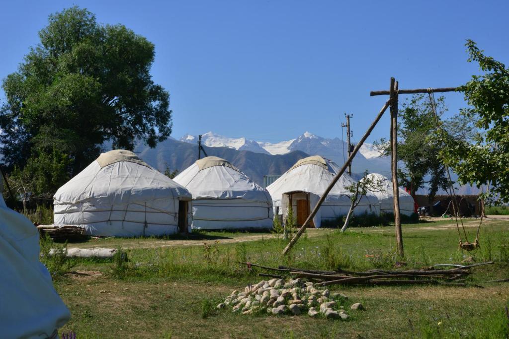 A garden outside Jurten Camp Almaluu