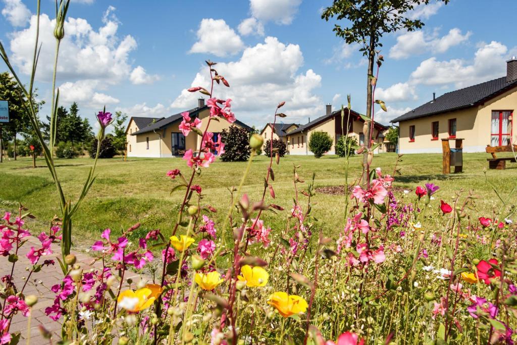 Ein Garten an der Unterkunft Seepark Auenhain