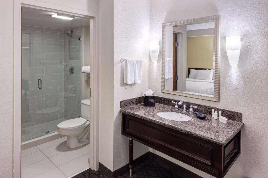 A bathroom at SpringHill Suites by Marriott Dallas Downtown / West End
