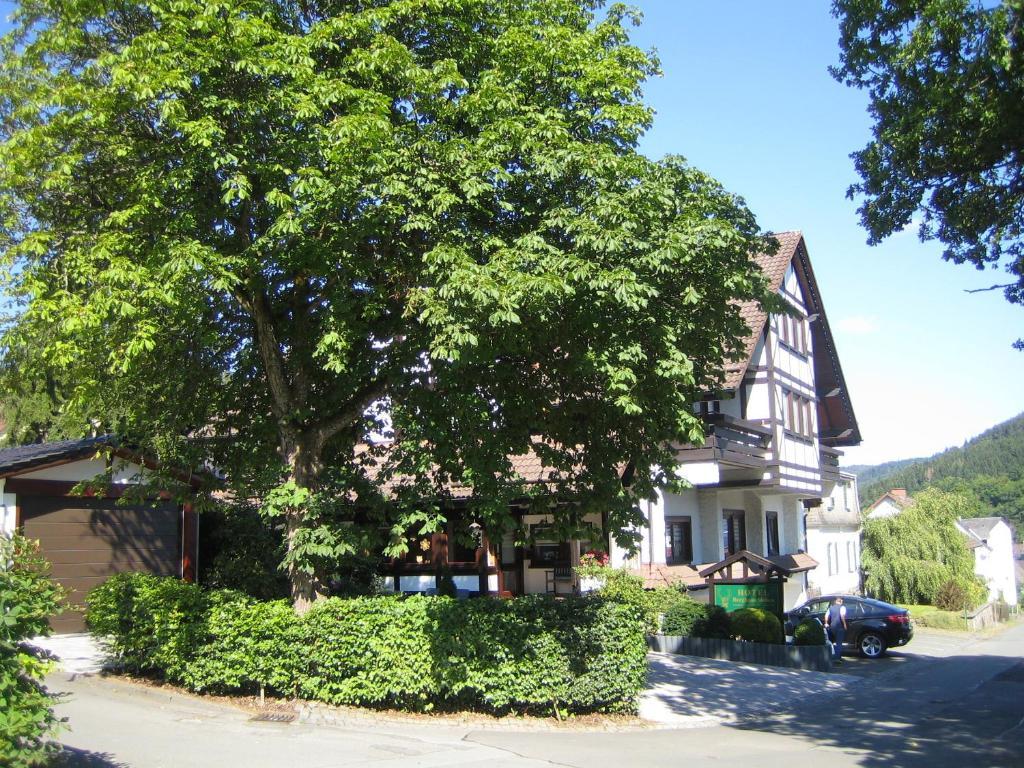 Ein Garten an der Unterkunft Hotel Pension Berghaus Sieben