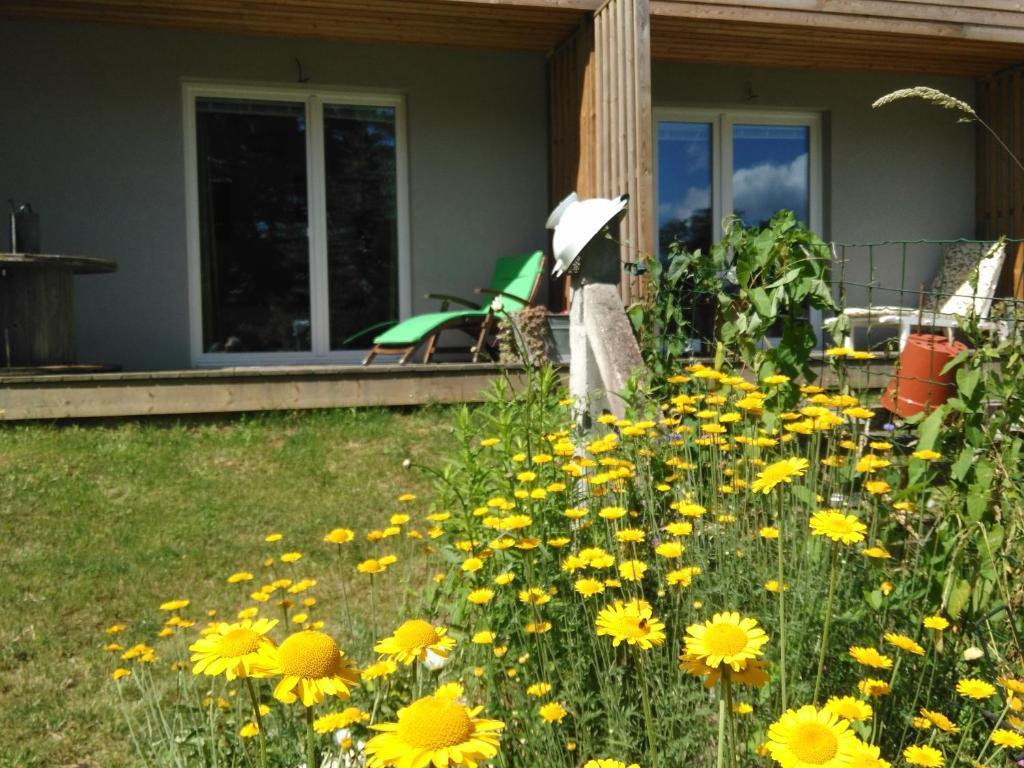Terrasse ou espace extérieur de l'établissement Chambres d'hôtes Souffle Nature