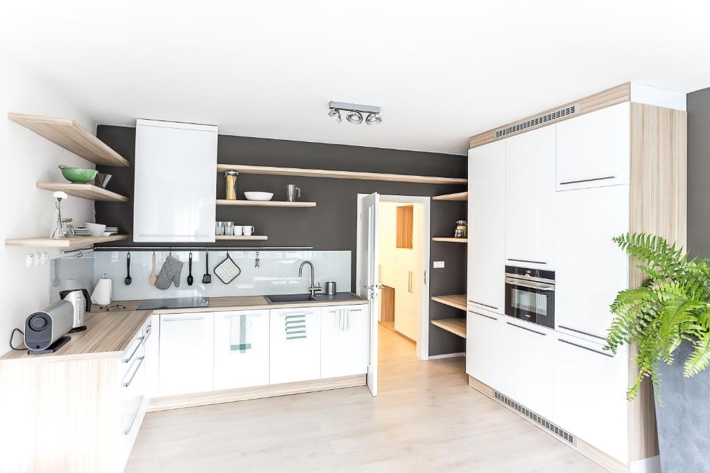 Kuchyň nebo kuchyňský kout v ubytování Sunny Apartment Ostrava Center