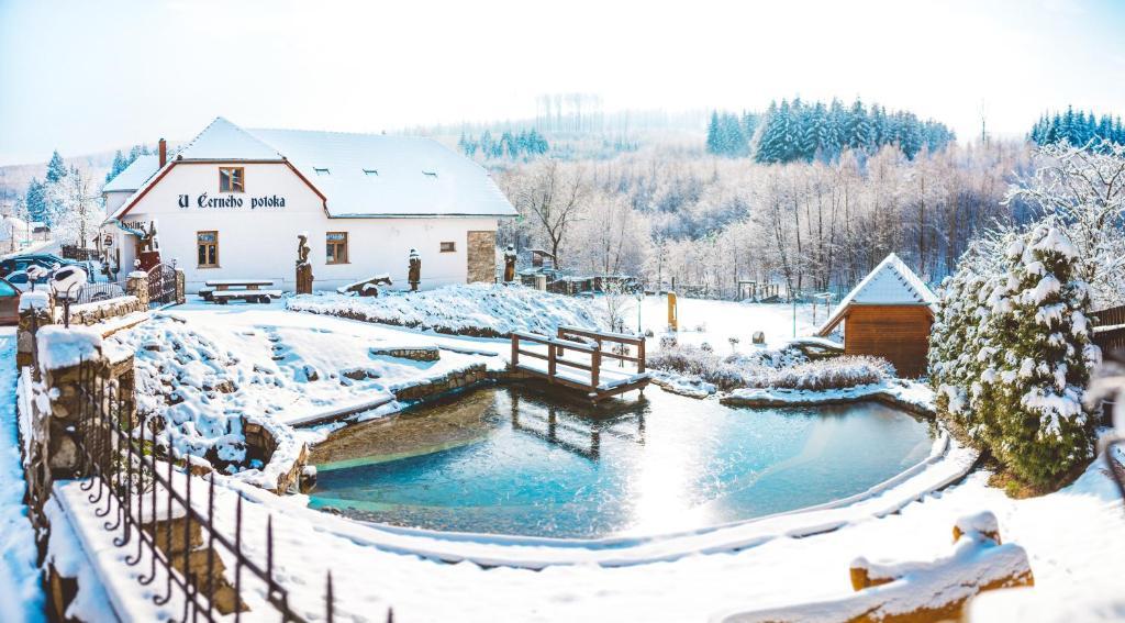 Výhled na bazén z ubytování Penzion U Černého Potoka nebo okolí