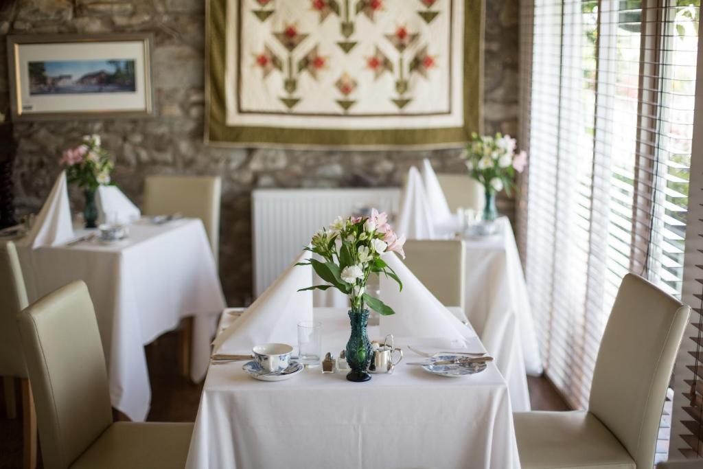 Penbontbren Luxury bed and Breakfast - Laterooms