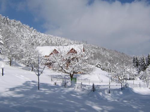 Hôtel Restaurant Domaine De Basil during the winter