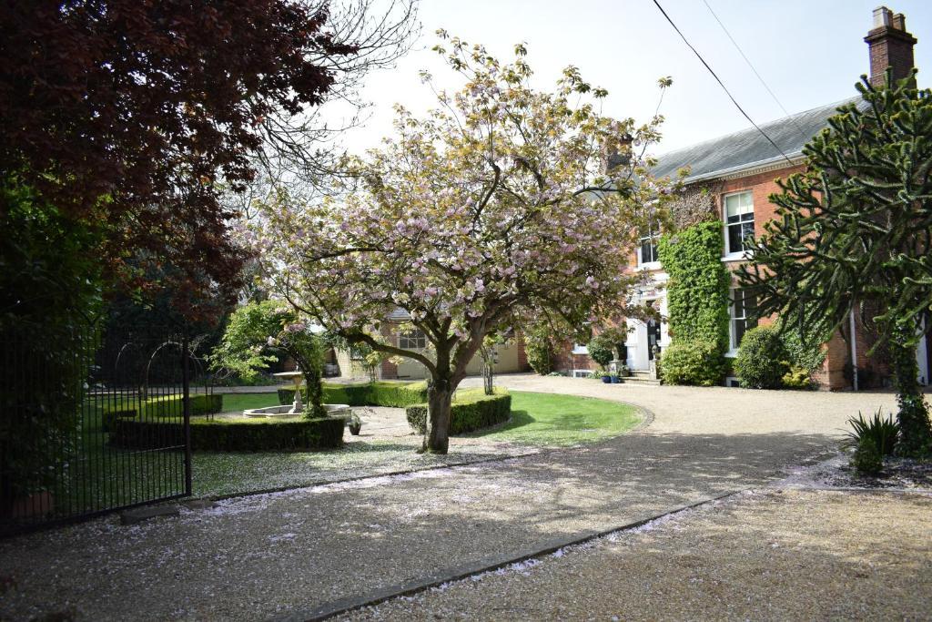 A garden outside Glendower Guest Apartments
