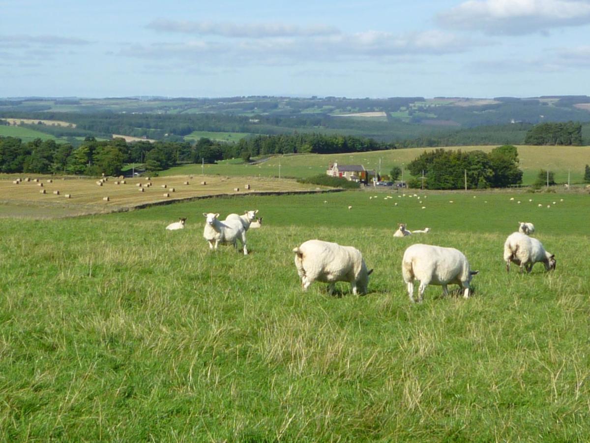 Rye Hill Farm - Laterooms