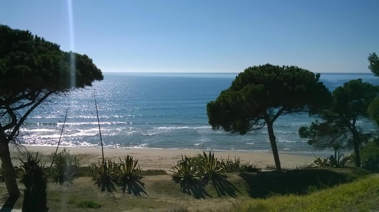 Hotel Playa Park - Laterooms
