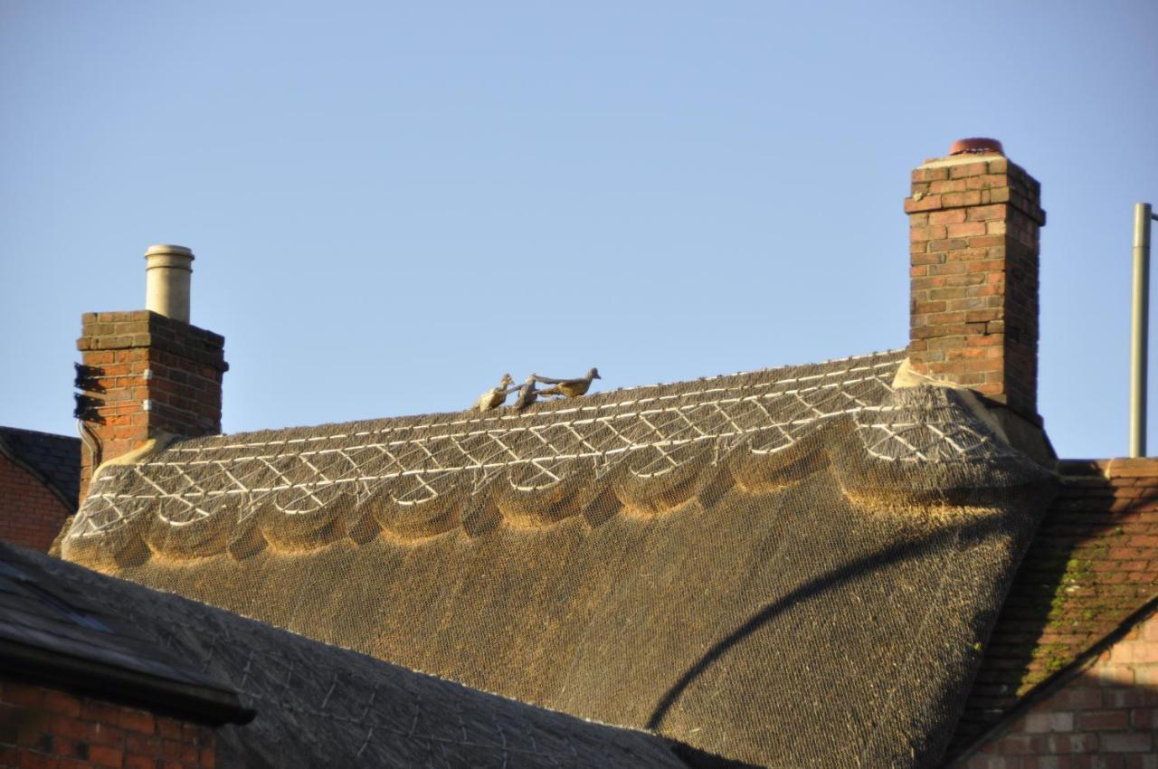 The Three Pigeons Inn - Laterooms