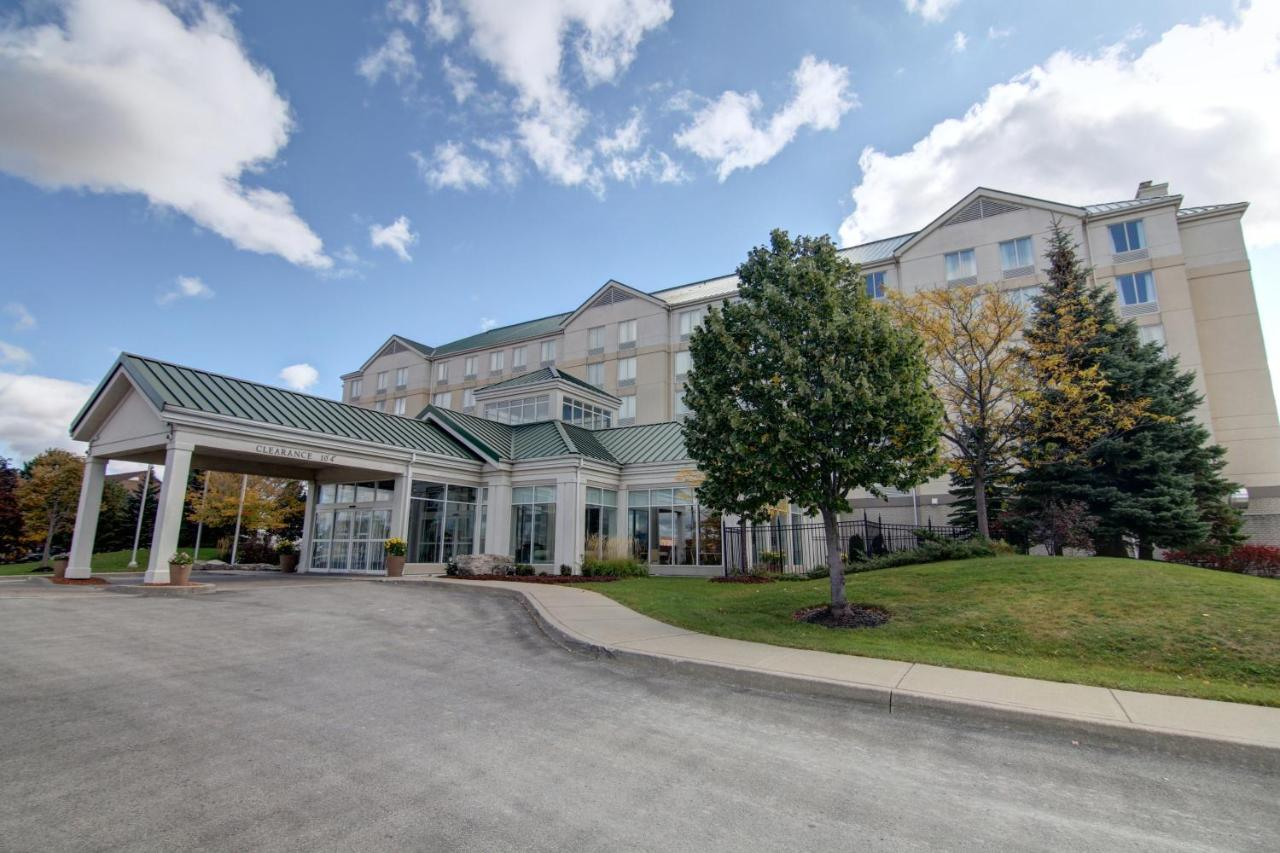 Hilton Garden Inn Toronto/Mississauga - Laterooms