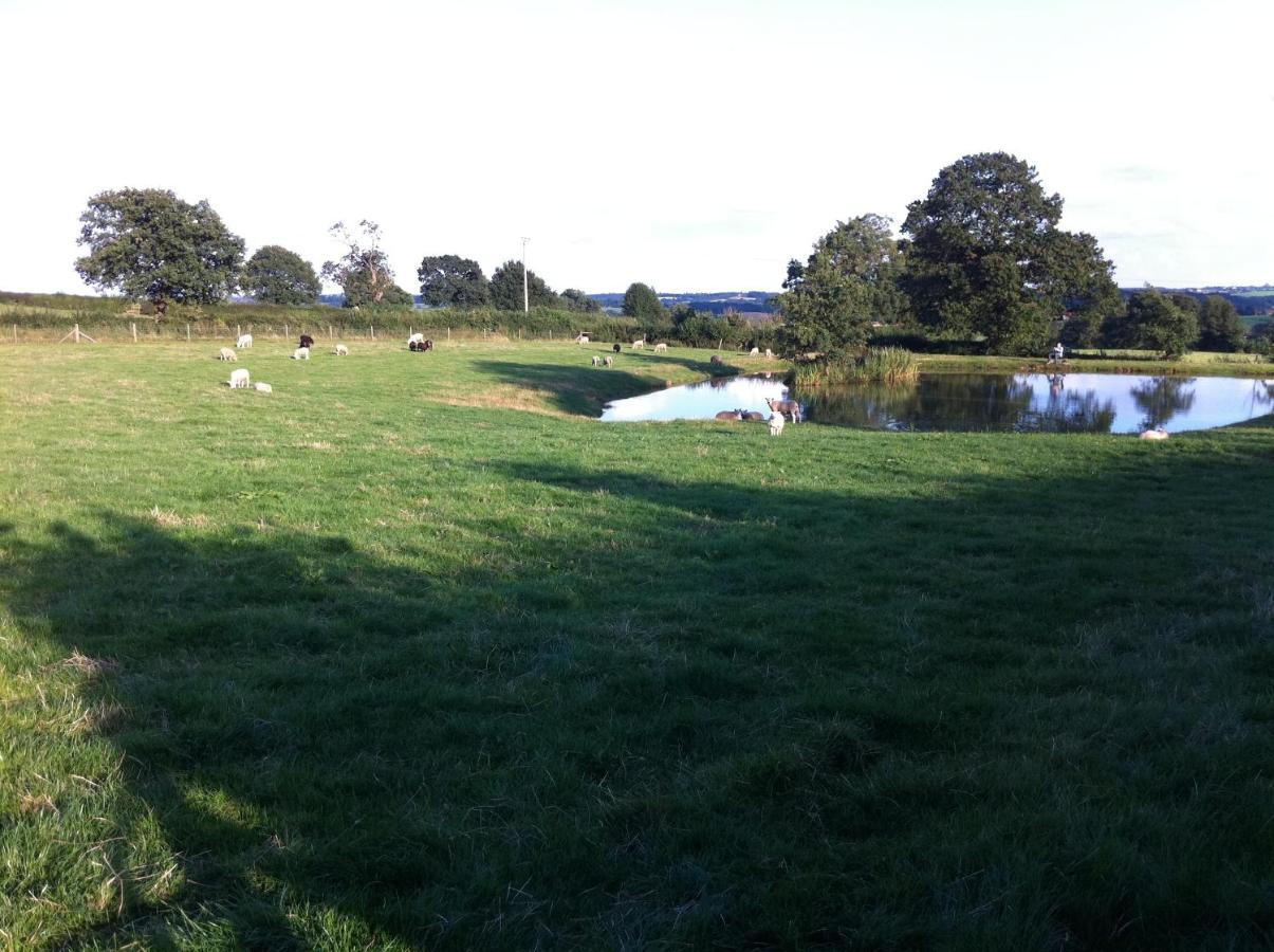 Crich Lane Farm - Laterooms