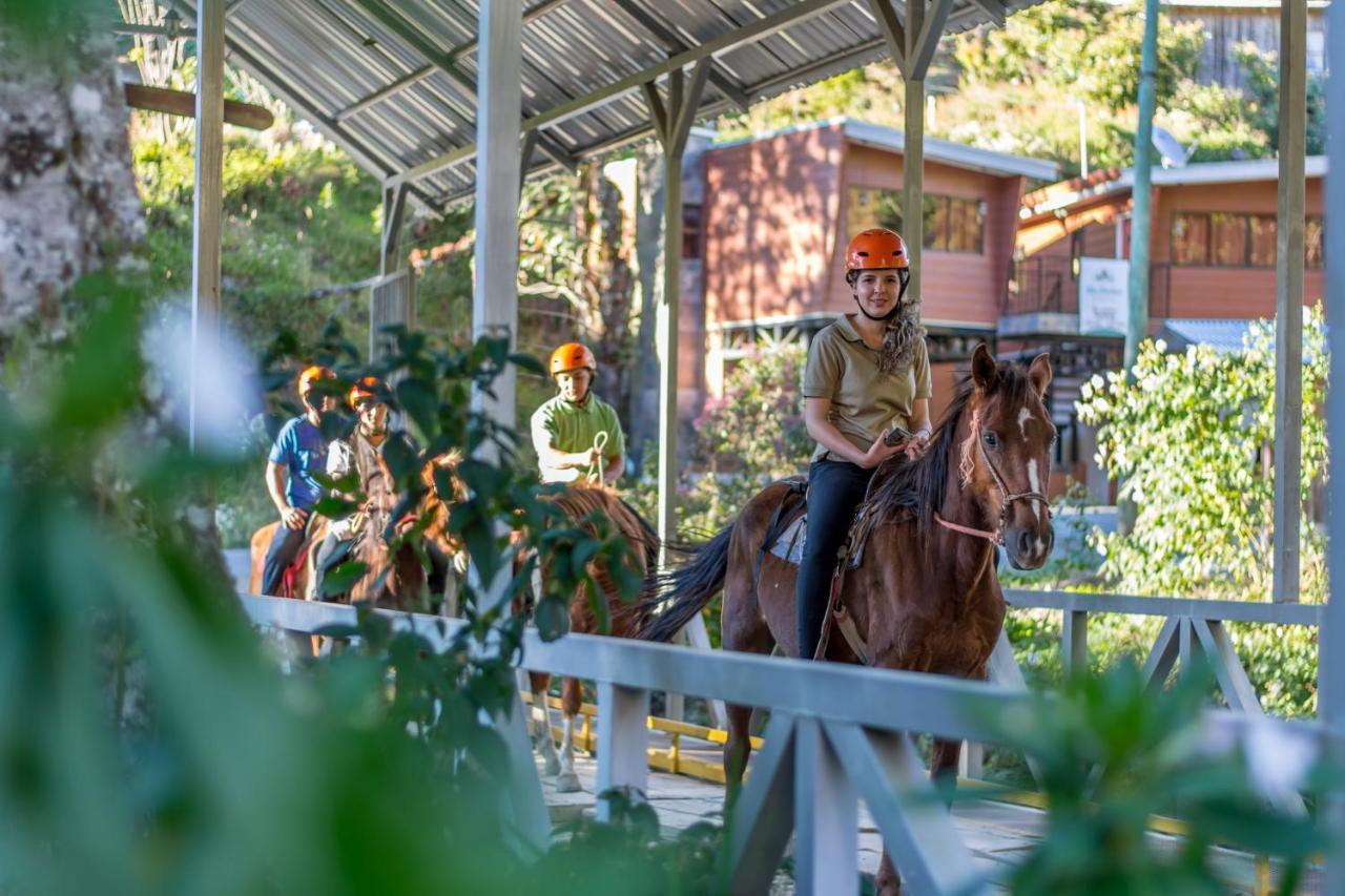 Suenos Del Bosque Lodge San Gerardo De Dota Updated 2021 Prices