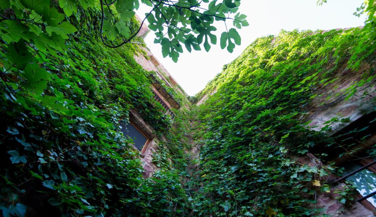 El Jardín Vertical - Laterooms