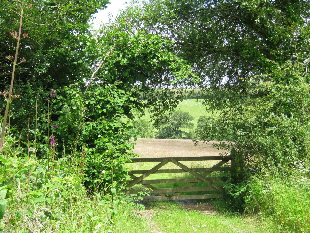 Hollamoor Farm - Laterooms