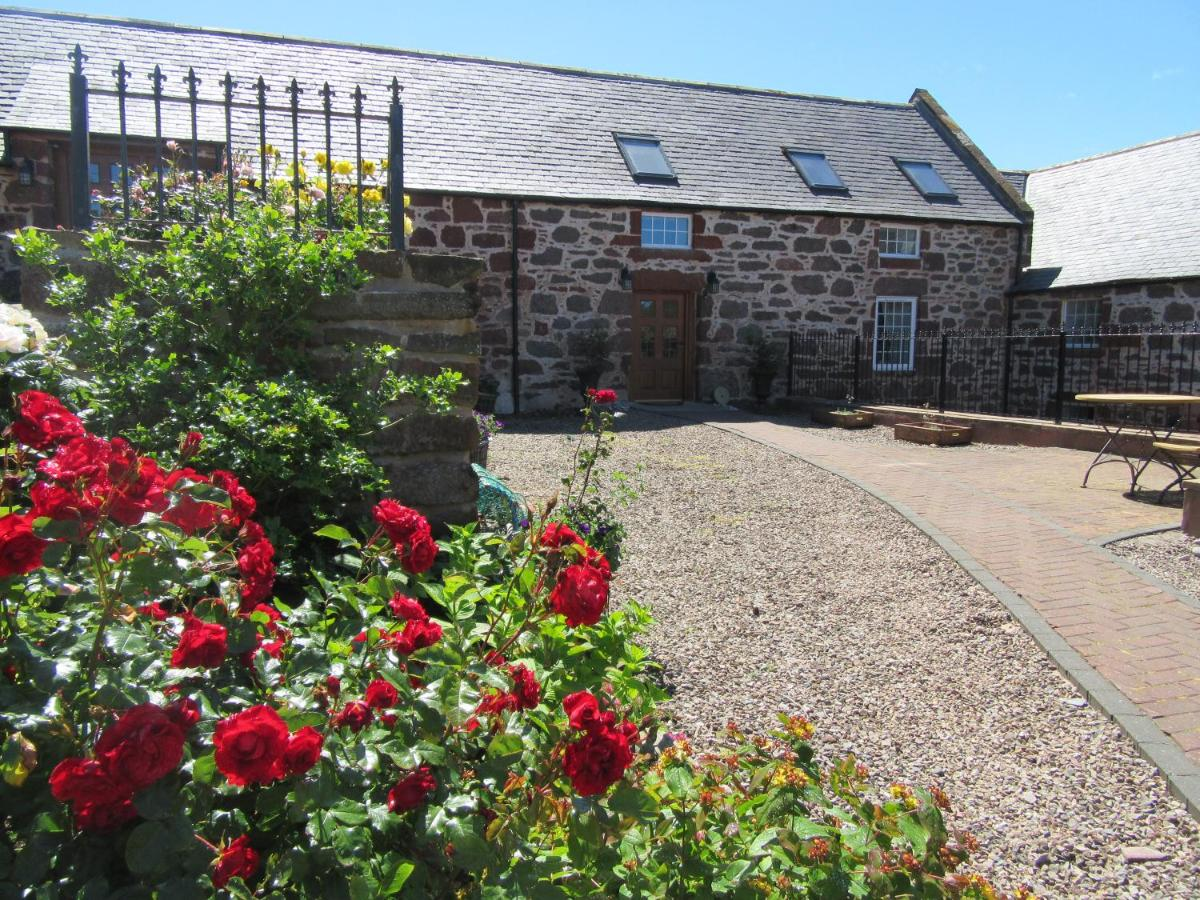 Mill of Nethermill Holidays - Laterooms
