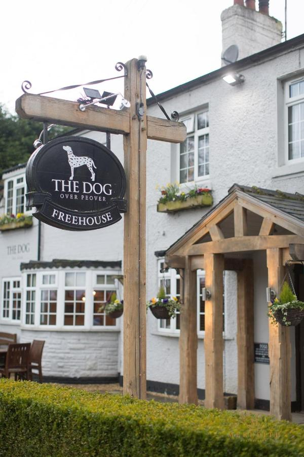 The Dog - Laterooms