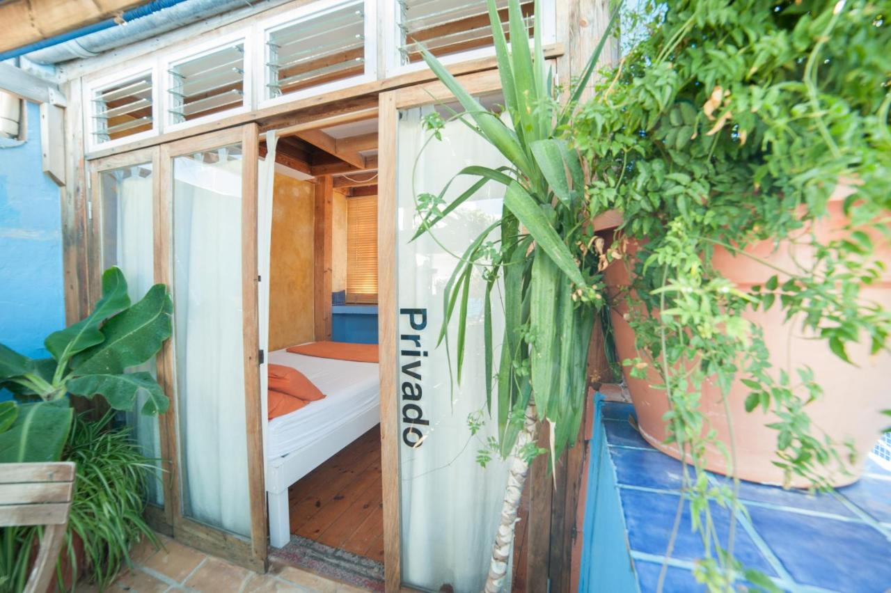 Casa Caracol - Hostel/Backpacker - Laterooms