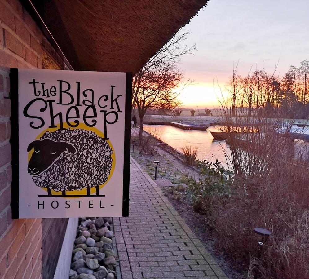 Black sheep dating polish girl