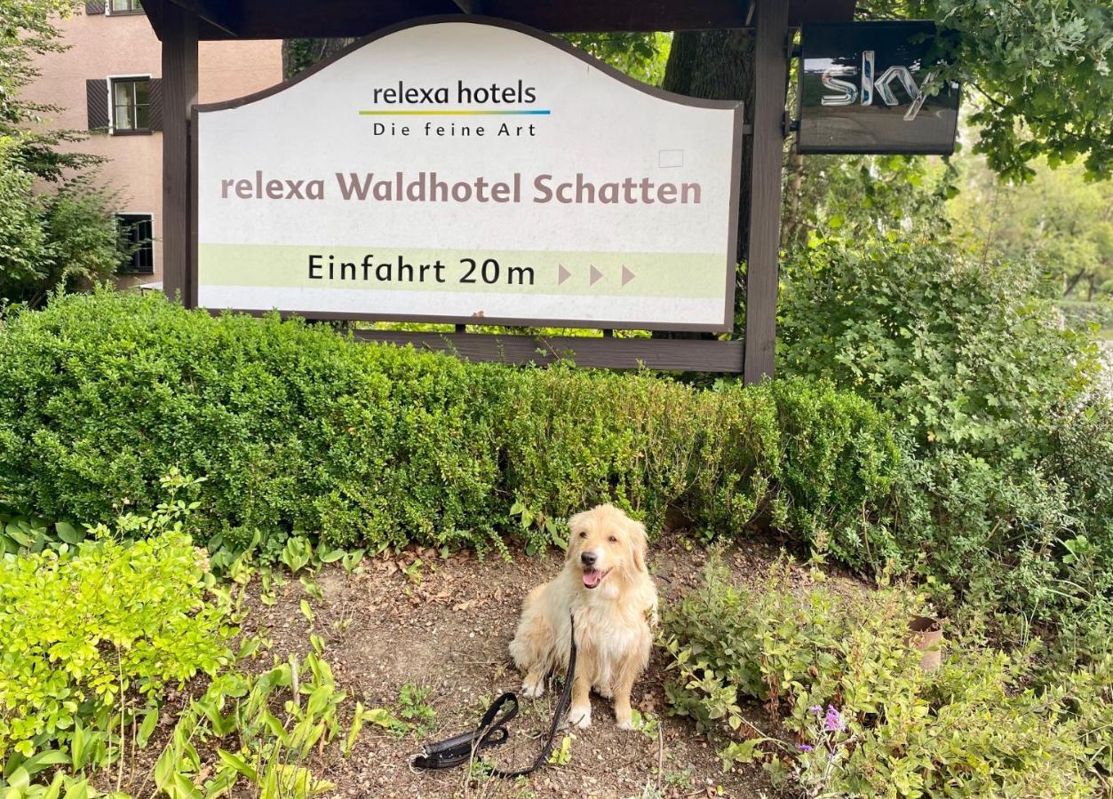 relexa Waldhotel Schatten - Laterooms