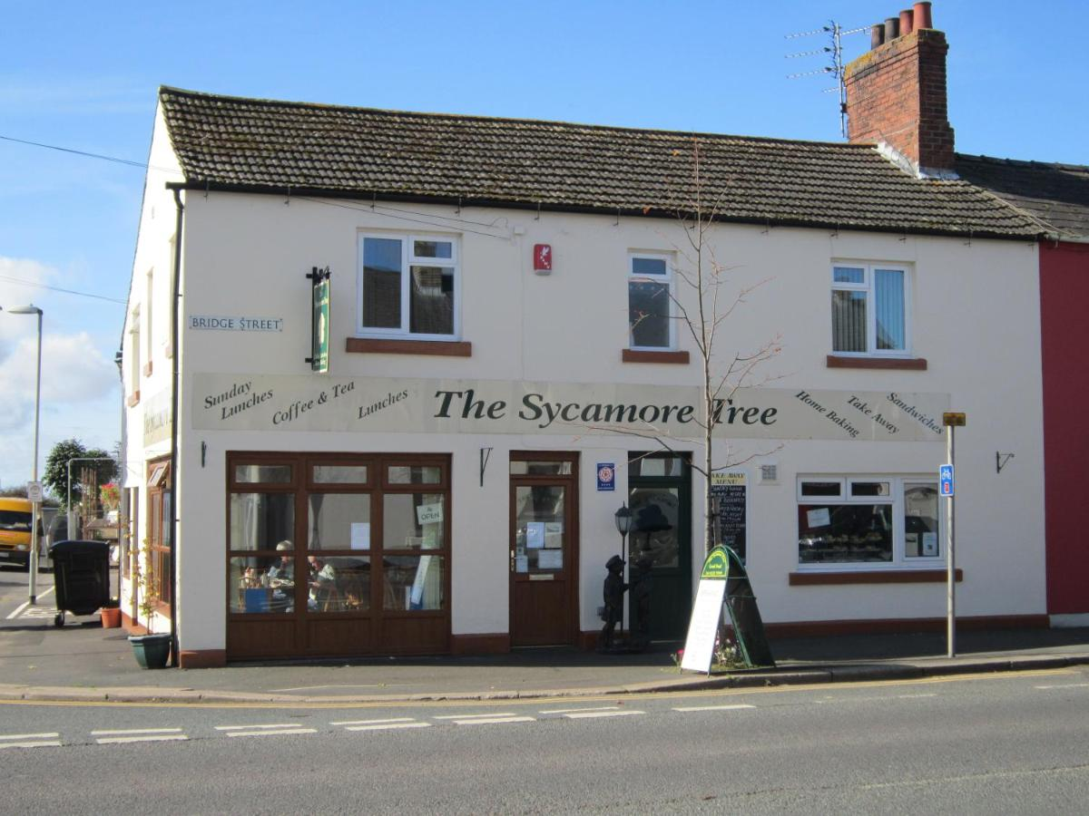 The Sycamore Tree - Laterooms