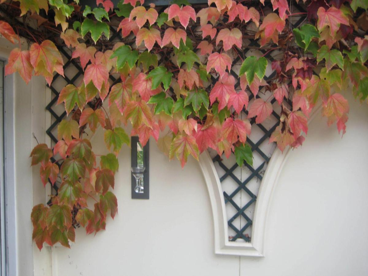 Altonlea Lodge - Laterooms