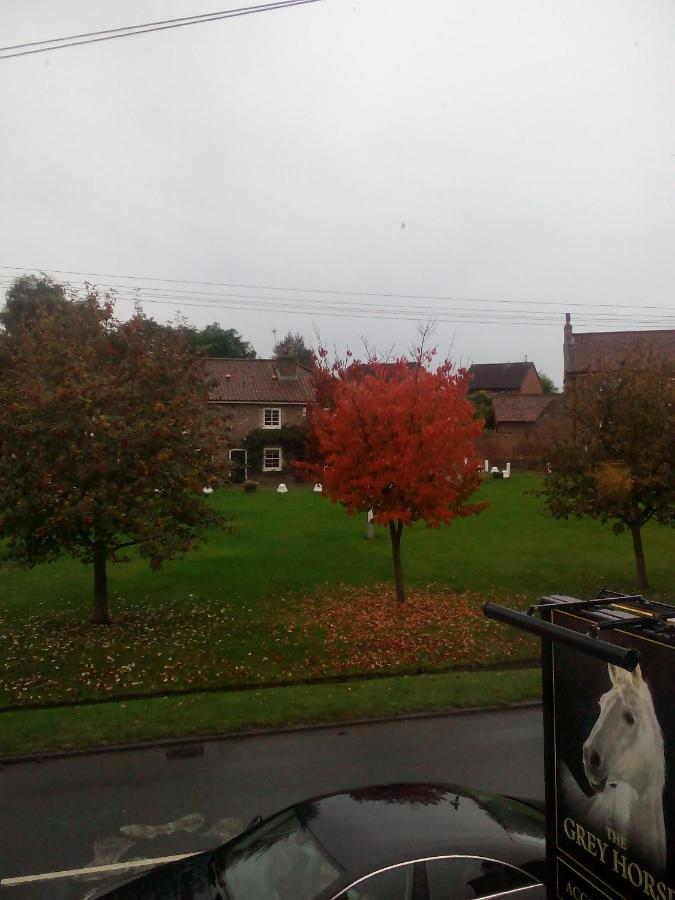 The Grey Horse Inn - Laterooms