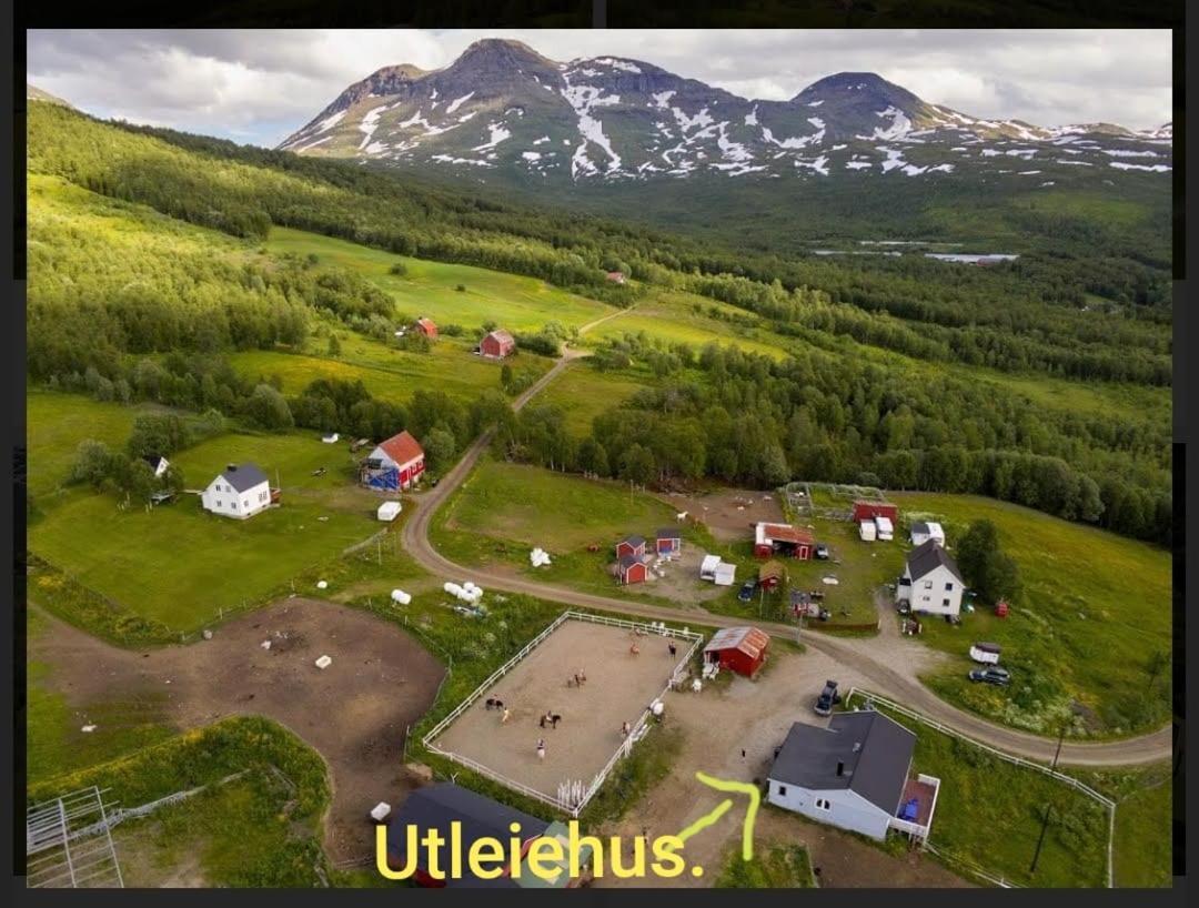 speed dating i aurskog-høland lærdal dating norway