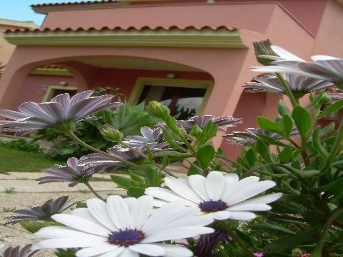 Ariedo Bed and Breakfast - Laterooms