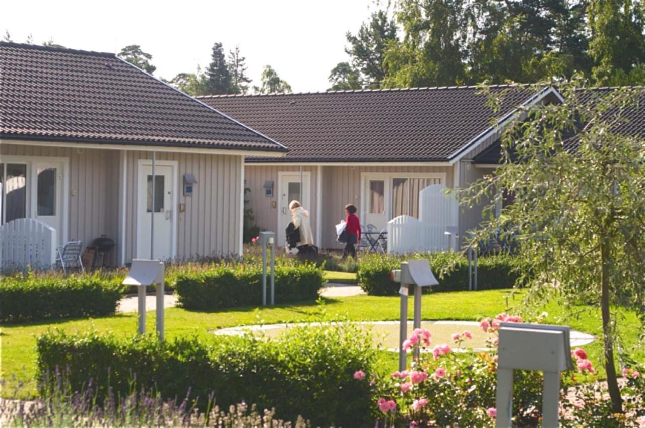 Åhus Singel Kvinna, Dejt aktiviteter i ljustorp : Ekholmensallservice