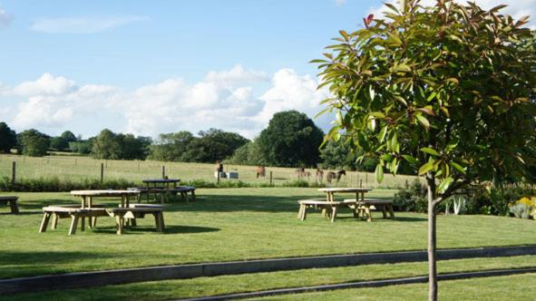 The Bull at Great Totham - Laterooms