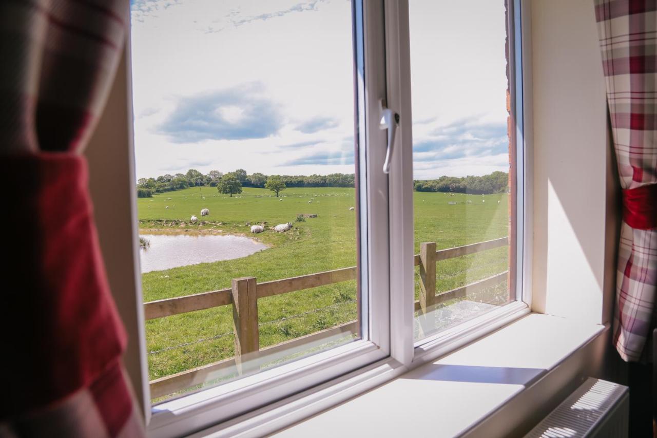 Millmoor Farm Holidays - Laterooms