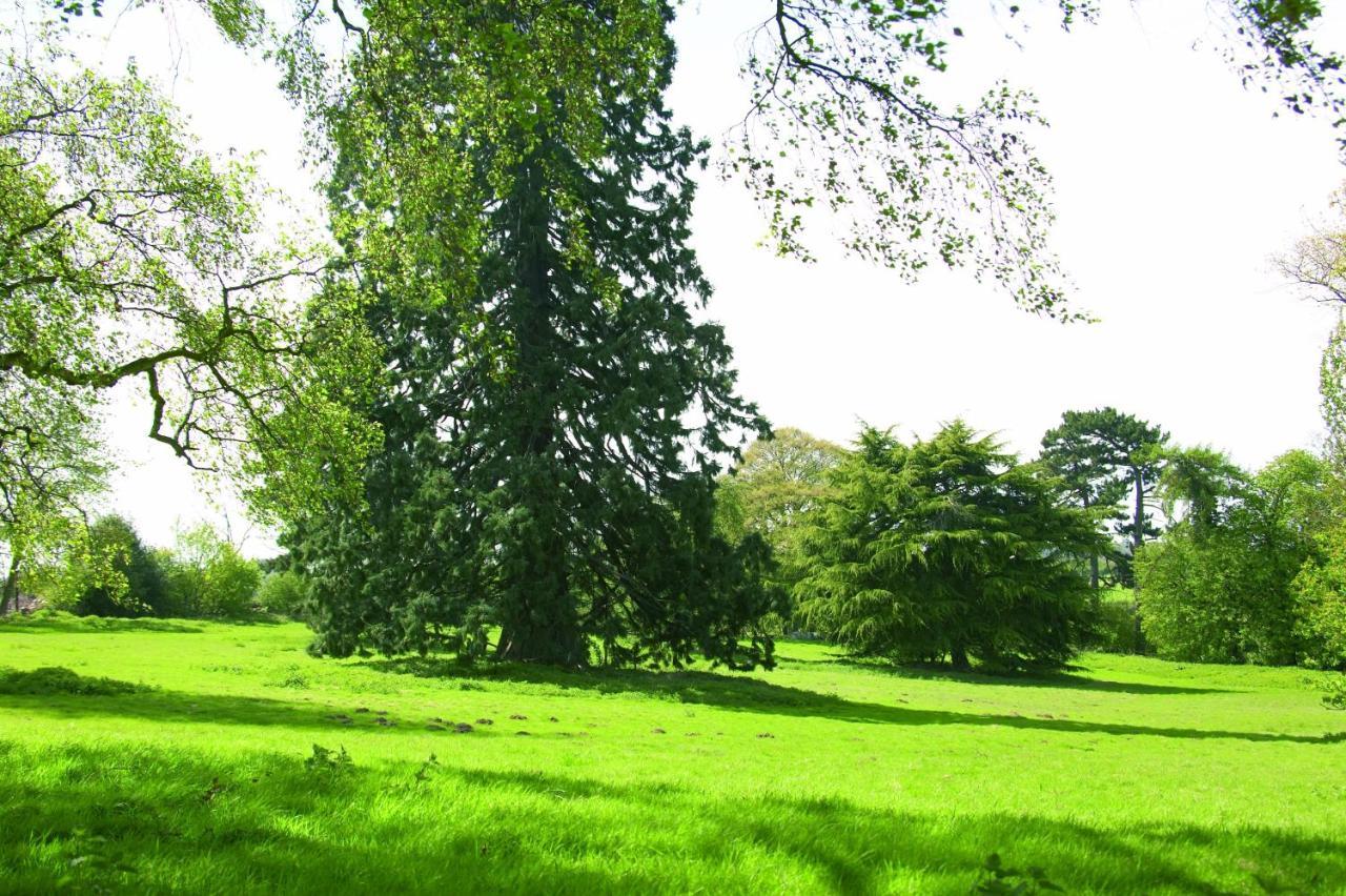Woodland Grange - Laterooms
