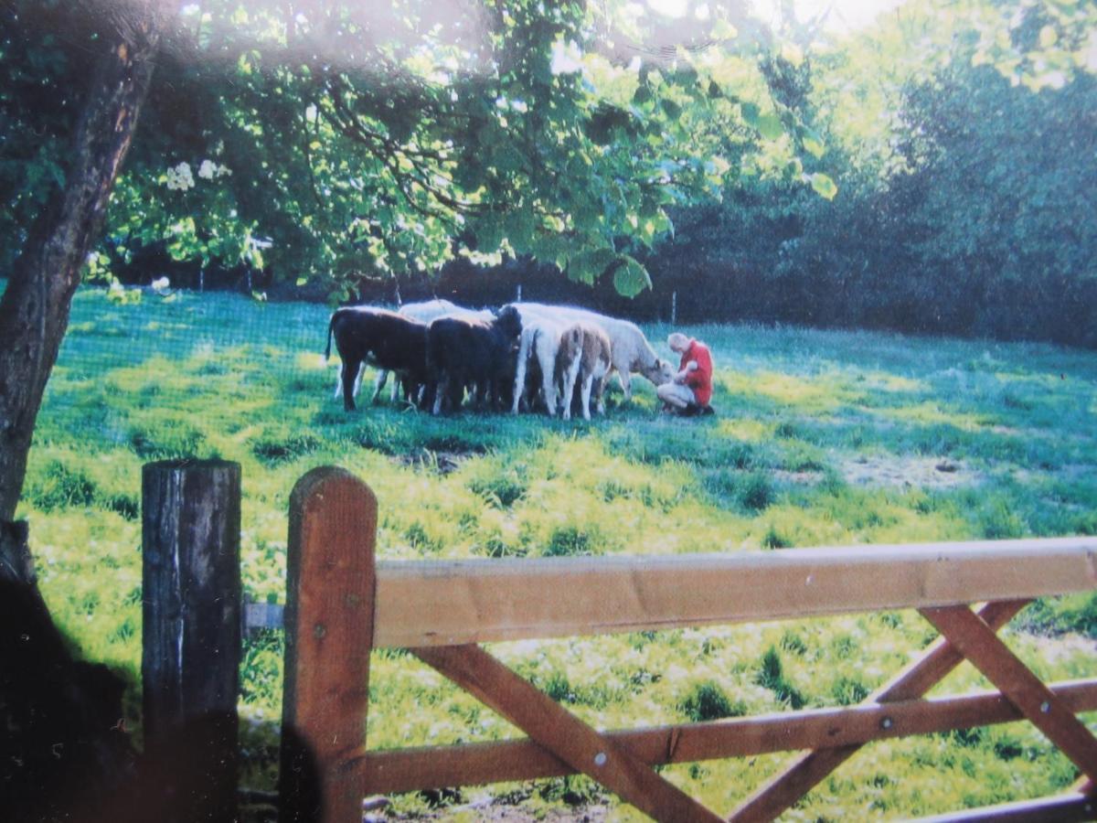 Corner Farm - Laterooms