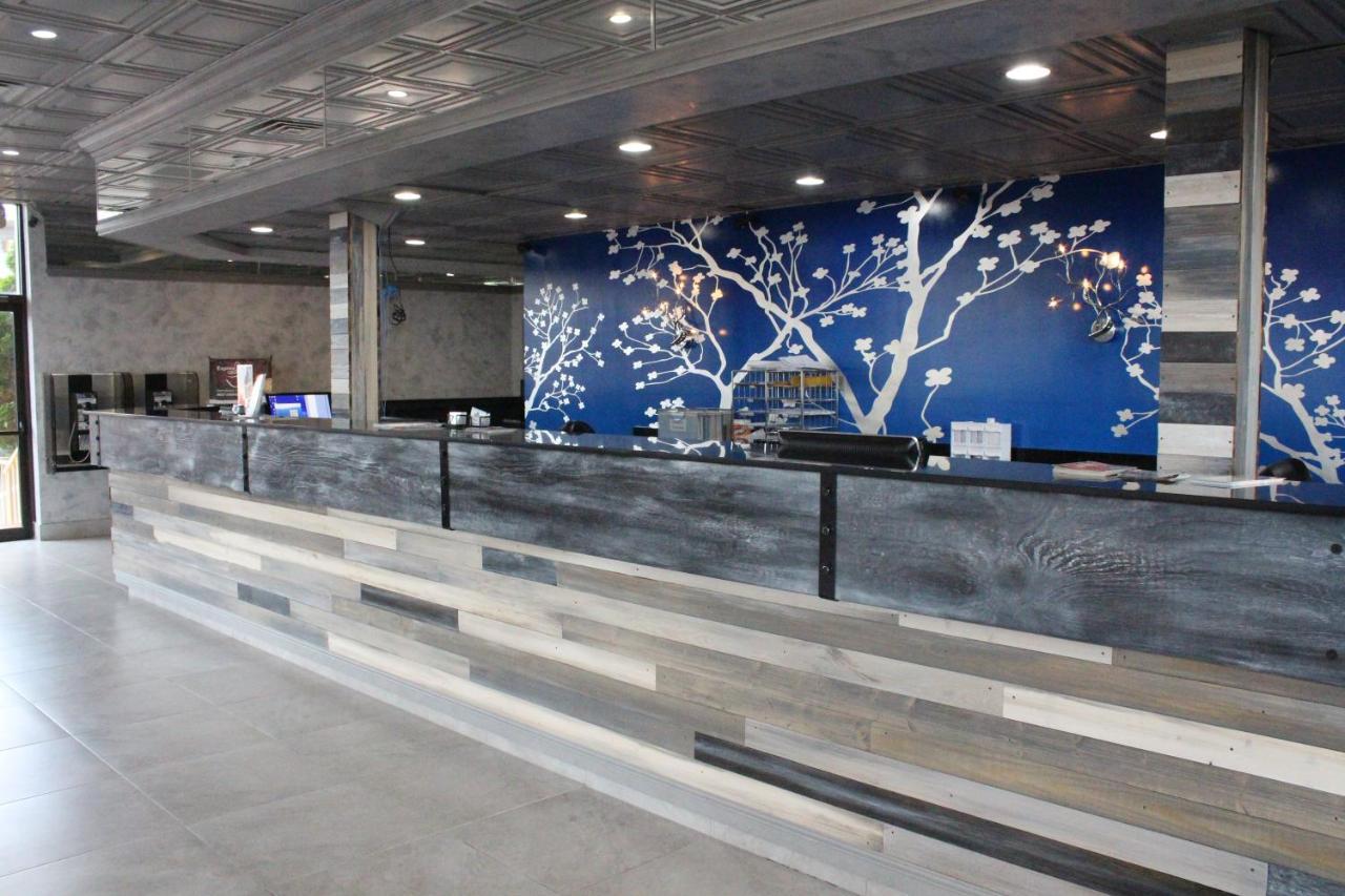 Celebration Suites Orlando Updated 2021 Prices