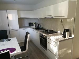 Kuchyňa alebo kuchynka v ubytovaní Apartman Prievidza-Bojnice