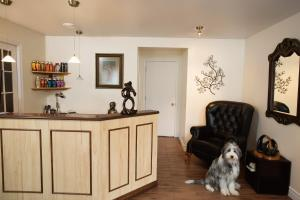 Pet or pets staying with guests at Motel Blanche d'Haberville