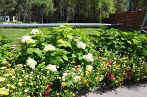 Сад в База Отдыха Заимка Камза