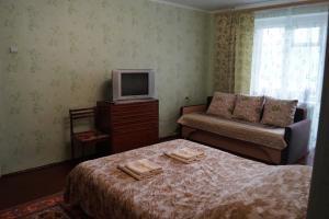 Телевизор и/или развлекательный центр в Apartment na L'va Tolstogo 52
